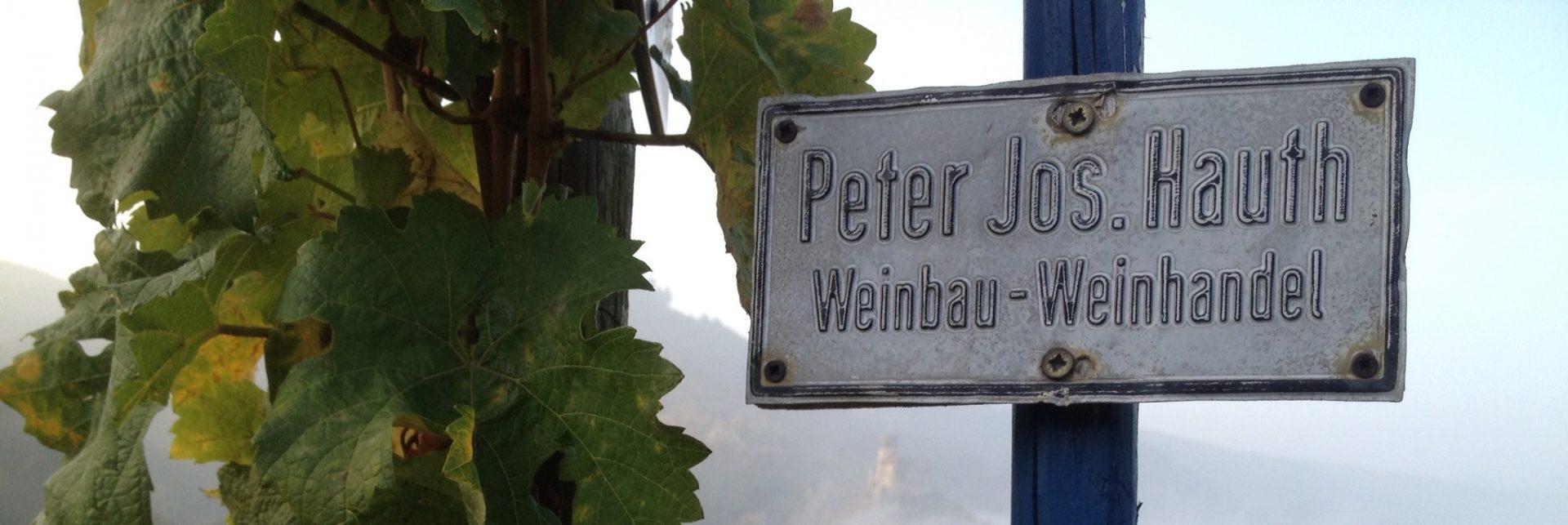 Weingut Hauth